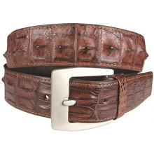 Genuine alligator leather belt 105CKP Brown