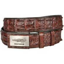 Genuine crocodile leather double row hornback belt CRBD1-5 Brown