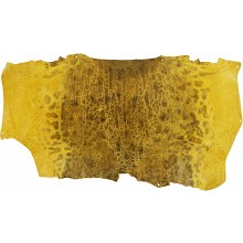 Genuine frog / toad skin FROGSK02 Yellow