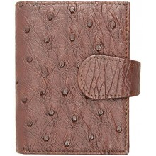 Genuine ostrich leather card holder OSCC001 Brown
