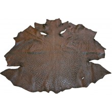 Genuine ostrich skin OSSKIN001 Brown