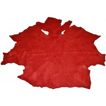 Genuine ostrich skin OSSKIN001 Red