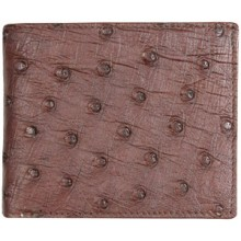 Genuine ostrich leather exclusive wallet OSSW501E Brown