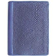 Genuine stingray leather card holder R01 Blue